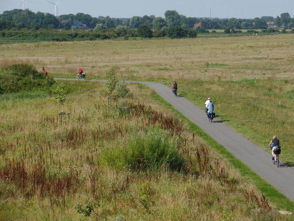 Radweg im Landschaftspark Altenbruch